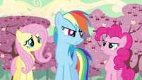 Rainbow Dash I don't know S2E14