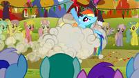 Applejack and Rainbow Dash fighting S1E13
