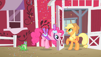 Pinkie Pie inviting Applejack to Gummy's party S1E25