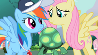 """Fluttershy """"It won't hurt to let him try"""" S2E7"""