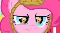 Pinkie stares at Applejack S1E25