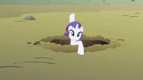 Rarity over here S1E19