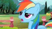 Rainbow Dash 'utmost importance' S2E07