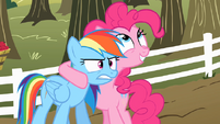 Pinkie Pie talking to Rainbow Dash about the cider S2E15.png