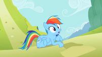 Rainbow Dash oh not good S2E8
