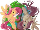 My Little Pony-Theorie