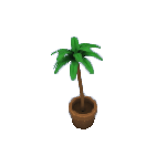 Plant-5.png
