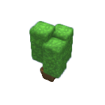 Plant-11.png