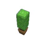 Plant-9.png