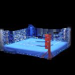 Wrestling Ring-2.png