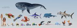Moana-wildlife-ca.jpg