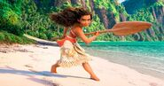 Moana Promotional Material- do have?