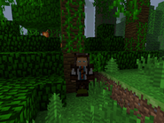 Player wearing hide armor