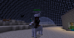 Player unicorn and bunny