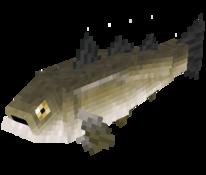Mediumfish3.png