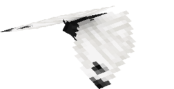 Small white.png