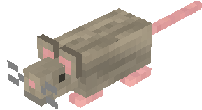 Gray mouse.png