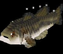 Mediumfish.png