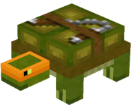 Turtle 2.png