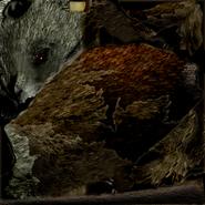 Act rat anthrax3