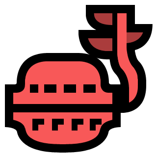 Baie dragon/MH3U
