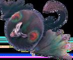 Paolumu belladone