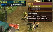 MHGen-Kokoto Village Screenshot 011
