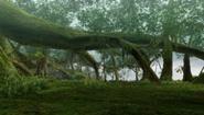 185px-GrtForest-Area5