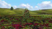 MHFGG-Flower Field Screenshot 006