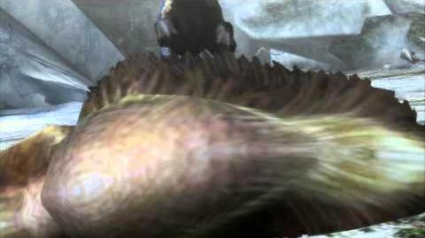 Grand Baggi/Vidéos