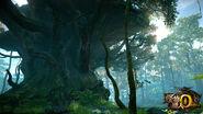 MHO-Hermit Forest Screenshot 002