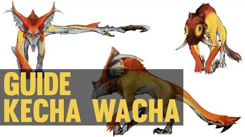 Kecha Wacha/Guides