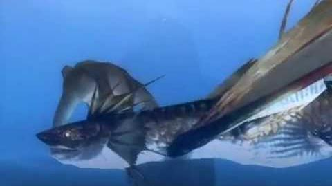 Monster_Hunter_3_(Tri)_G_-_Wyvern_of_Water_(Plesioth_intro)