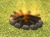 Bonfire detail.png