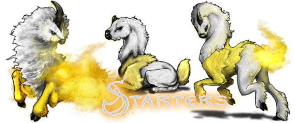 StarterBanner (2).png