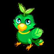 Palmwing Juvenile