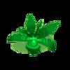 Palmweed