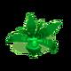 Palmweed.png