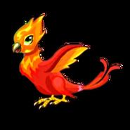 Phoenix Adult