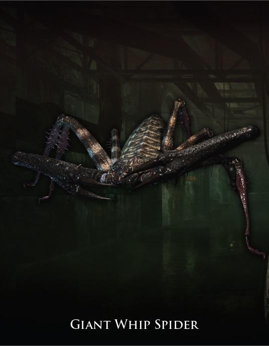 Giant Whip Spider
