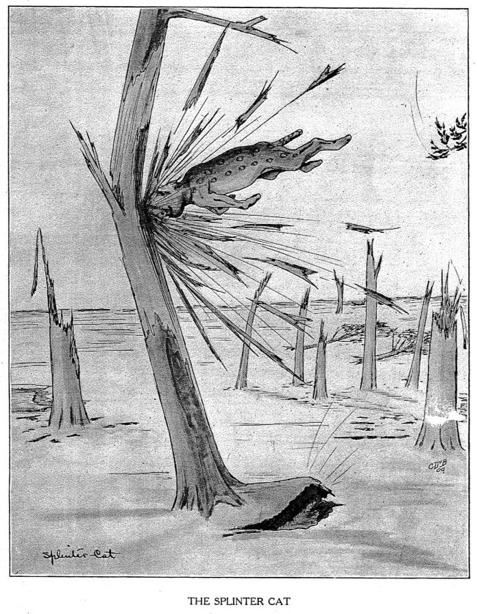 Illustration of an American mythical splintercat.