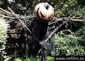 Scarecrow 5