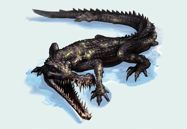Infected Alligator