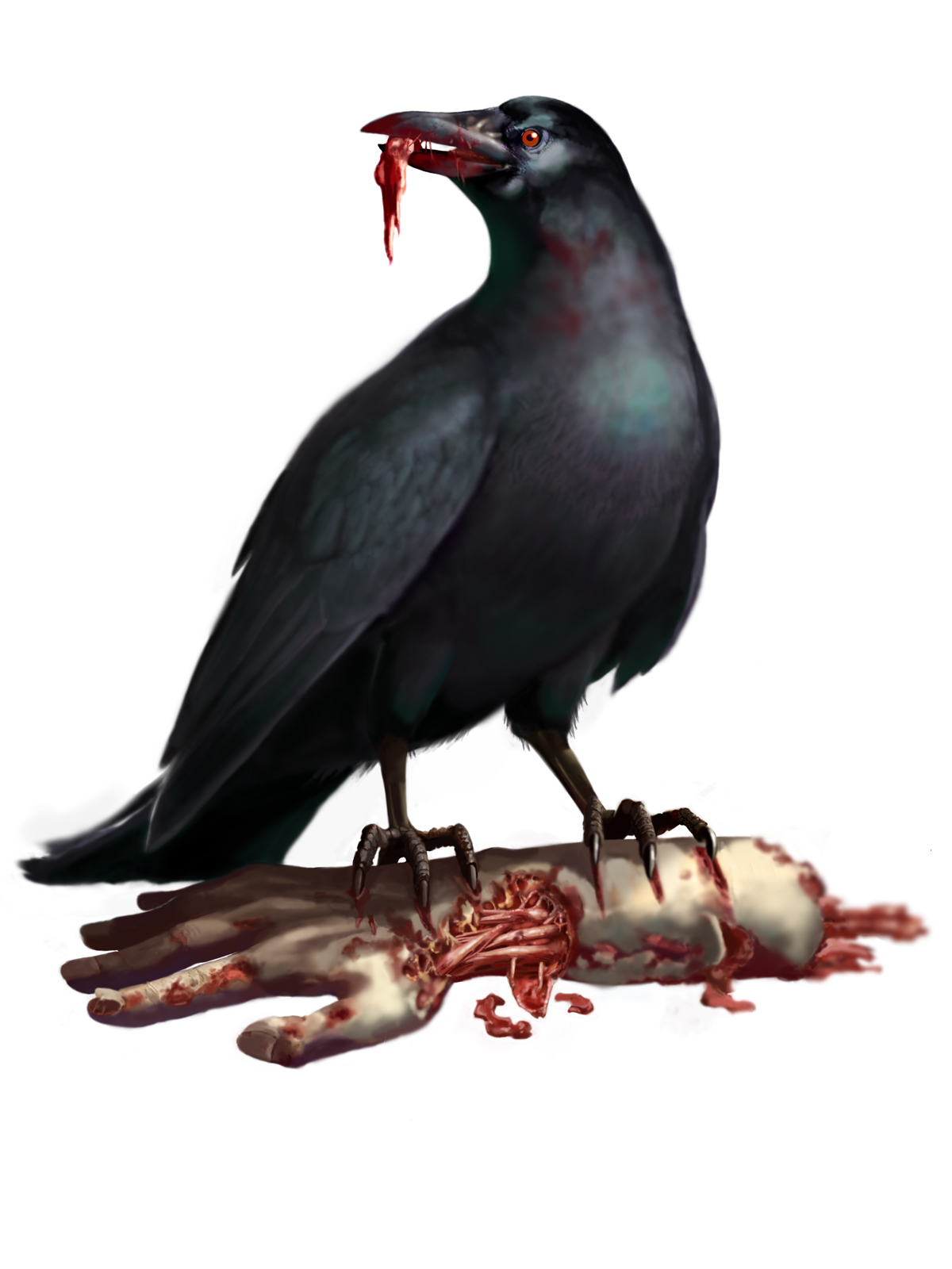 Infected Crow
