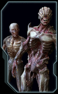 Zombie Codex.PNG