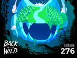 Monstercat: Call of the Wild - Episode 276