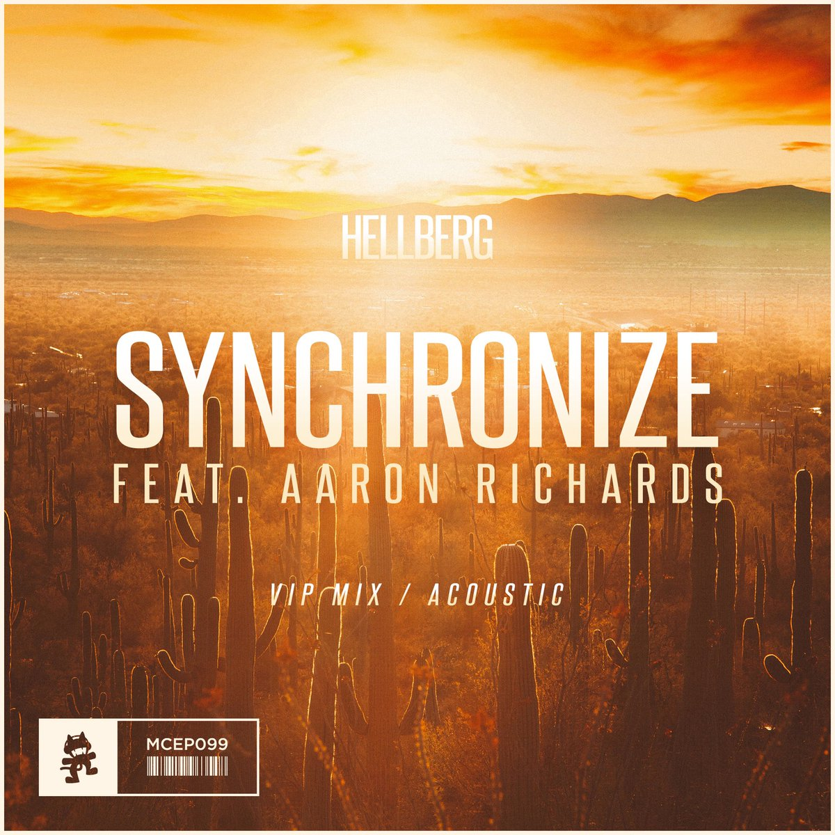 Synchronize (Acoustic)