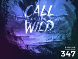 Monstercat: Call of the Wild - Episode 347