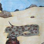 Horned Viper Lamia (2).jpeg