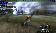 MHGen-Silverwind Nargacuga and Nargacuga Screenshot 001